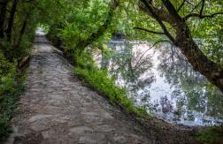 A Duna felső szakaszán és a Körösöknél folytatódik a biológiai szúnyoggyérítés